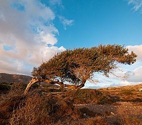 Karpathos 2010: Paesaggi