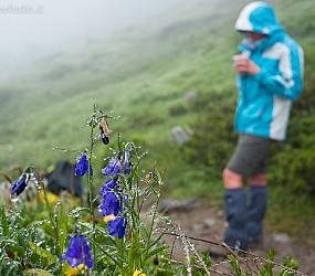 Tour Mont Blanc: giorno 5