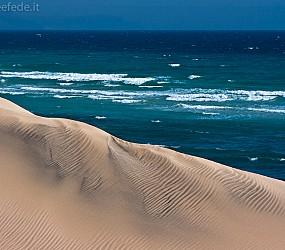 Tierra Dorada: Selvaggia Fuerteventura