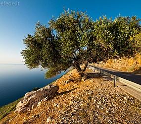 Isola di Cefalonia: la parte settentrionale e Myrtos