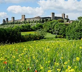 Avventura cicloturistica: Lucca – Assisi in MTB