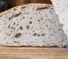 Il pane più buono è anche il più semplice: no-knead!