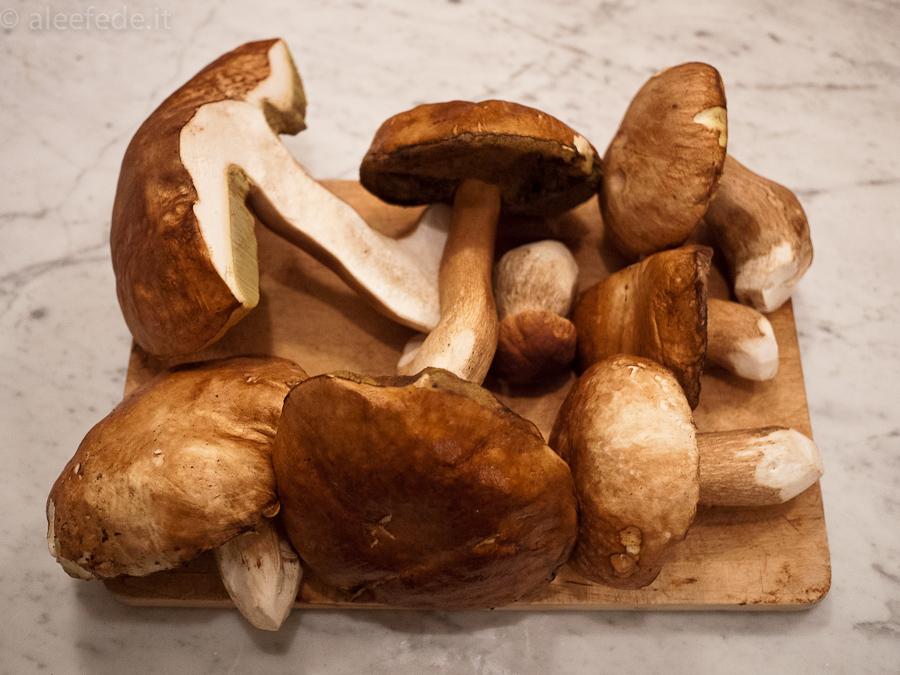 Ricetta biscotti torta funghi porcini cucinare for Cucinare funghi